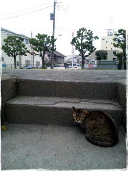 20110408_1645_Kawasaki.jpg